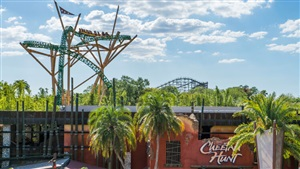 Ride Cheetah Hunt at Busch Gardens Tampa Bay