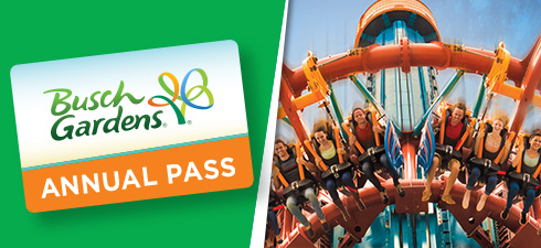 Buy An Annual Pass to Busch Gardens Tampa Bay