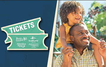 Tickets at Busch Gardens Tampa Bay