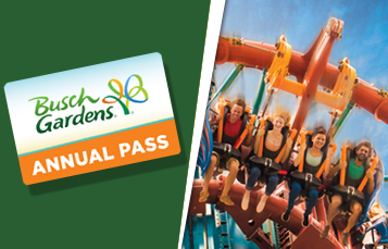 Theme Park Animal Encounters Things To Do Busch Gardens