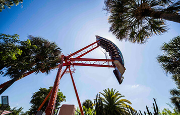 Ride Phoenix at Busch Gardens Tampa Bay