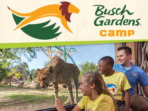 Grades 5 6 Summer Day Camps Busch Gardens Tampa Bay