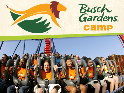 Combo Camps Resident Camps Busch Gardens Tampa Bay