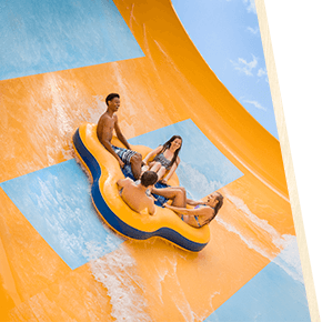 Stay in the loop at Busch Gardens Tampa Bay
