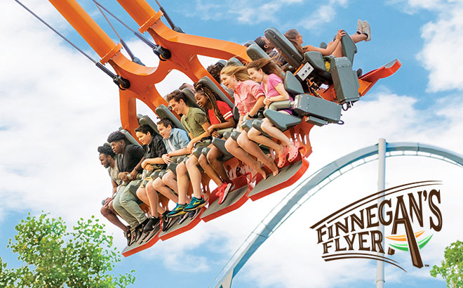 Roller coasters thrill rides busch gardens williamsburg - Busch gardens williamsburg rides ...